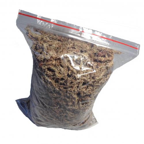 Rašeliník Jihoamerický 10 balení (50L) - New Sauros